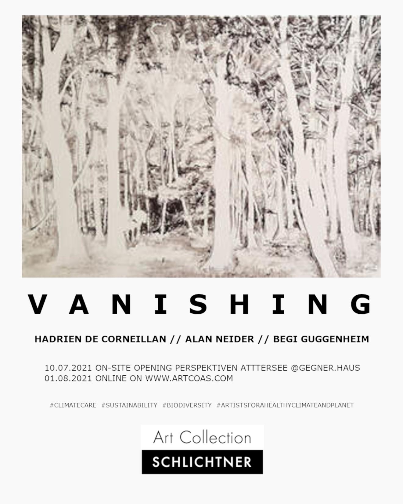 Hadrien de Corneillan // Alan Neider // Begi Guggenheim, VANISHING, an exhibition about #climatecare @ Gegner.Haus, Perspektiven Attersee 2021